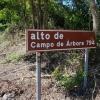 Alto de Campo de Arbore