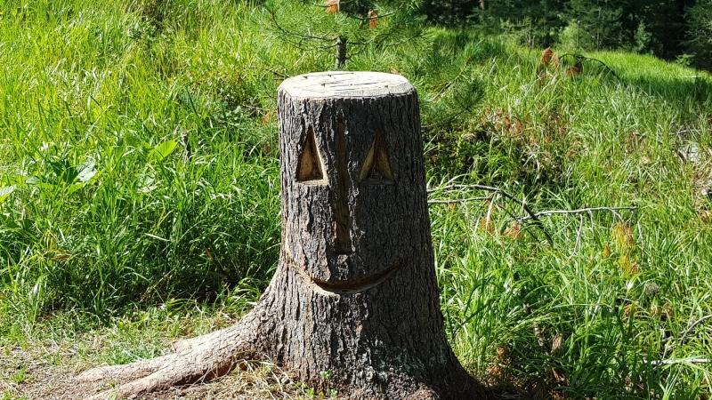 Holzfigur, unterwegs im Rosegtal