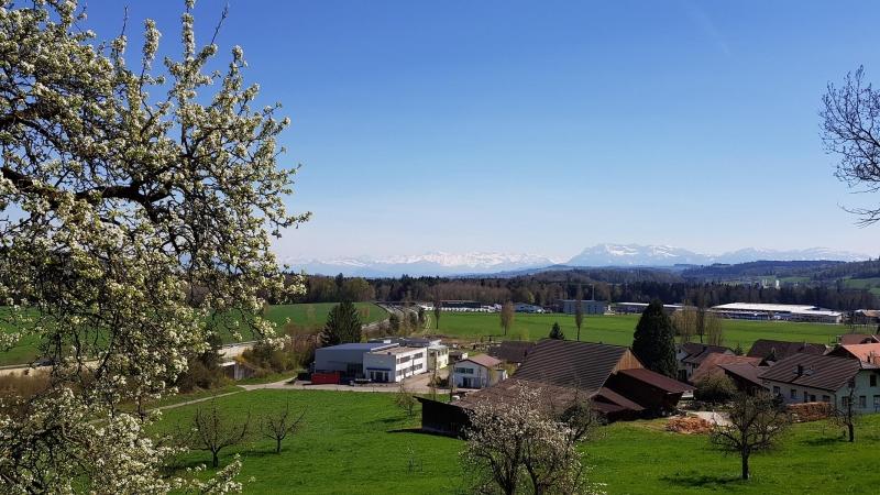 Blick zurück zum Alpenkamm, von St. Erhard