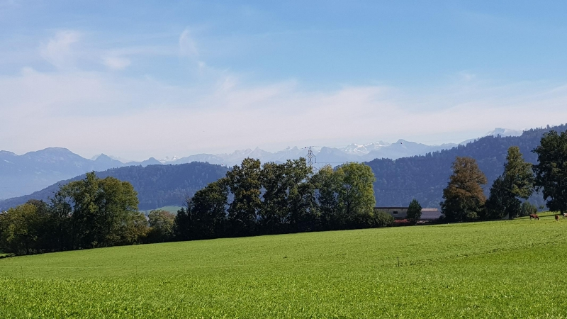 Panoramablick in die Alpen