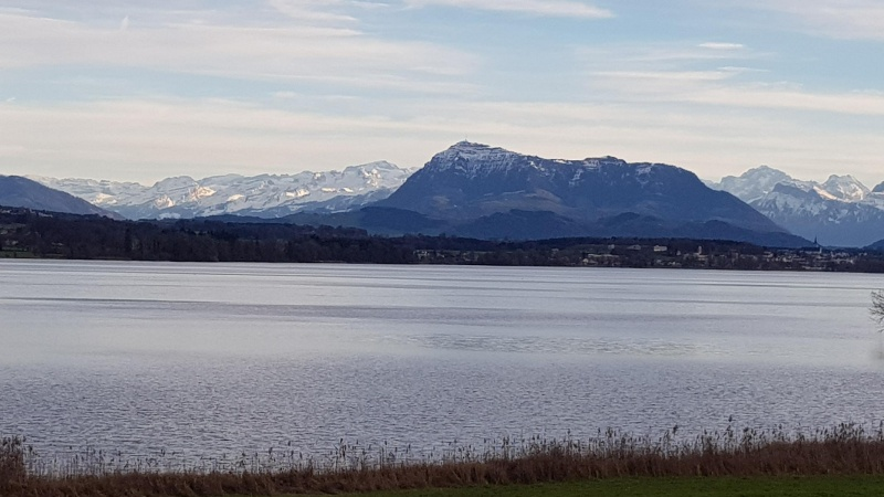 Baldeggersee, Rigi und Alpen