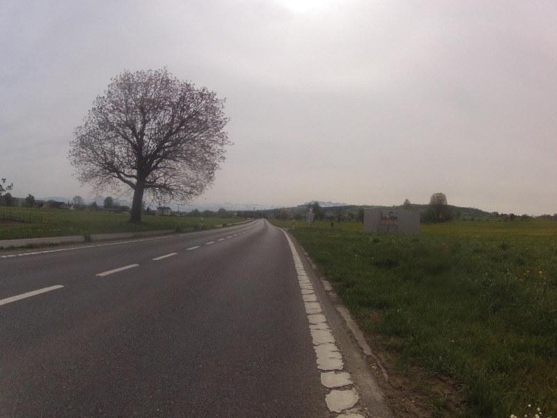 dem Sempachersee entlang