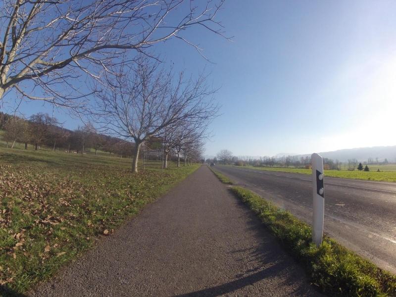 Radweg im Seetal