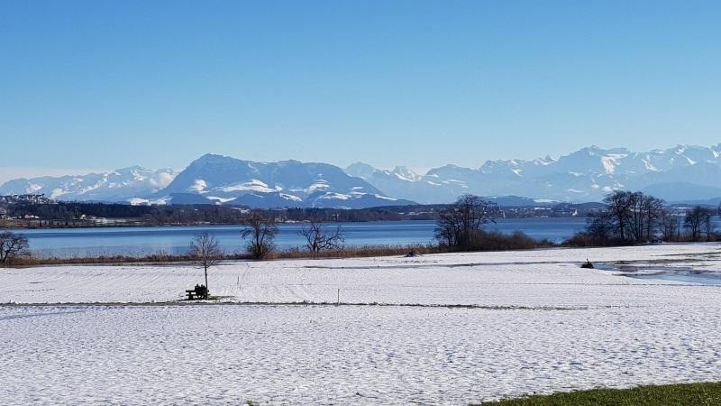 Baldeggersee und Alpenpanorama