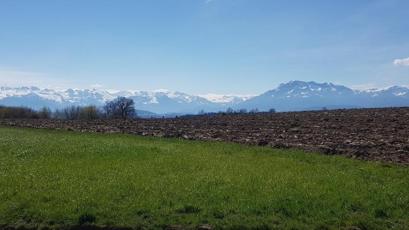 Ottenhusen, Blick zu den Alpen