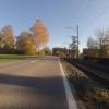 Herbstliche Farben am Strassenrand