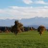 Blick zum Alpenrand