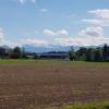 In der Nähe von Urswil, Blick zu den Alpen