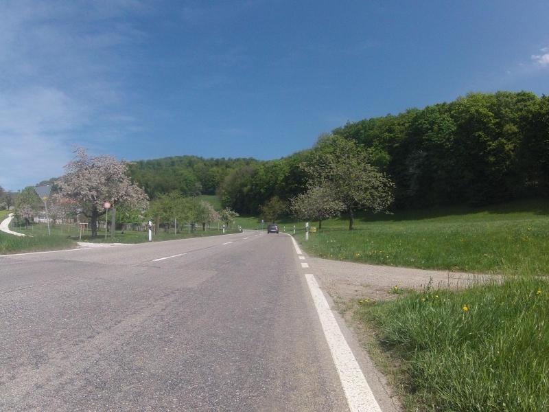 Auffahrt zum Hauenstein