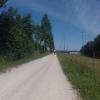 Radweg entlang der Aare
