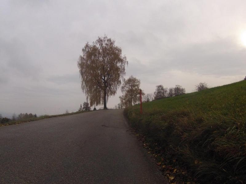 Vom Surbtal nach Regensberg hinauf