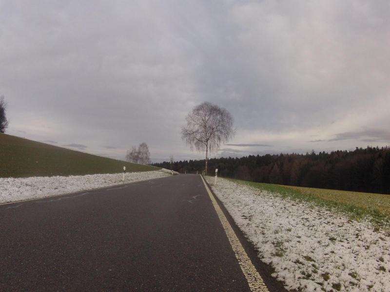 Schnee auf dem Regensberger