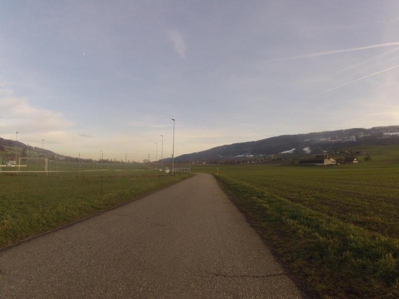 Radweg bei Niederweningen