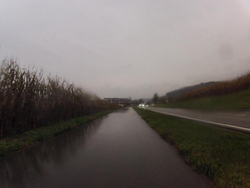 Radweg von Buchs nach Otelfingen