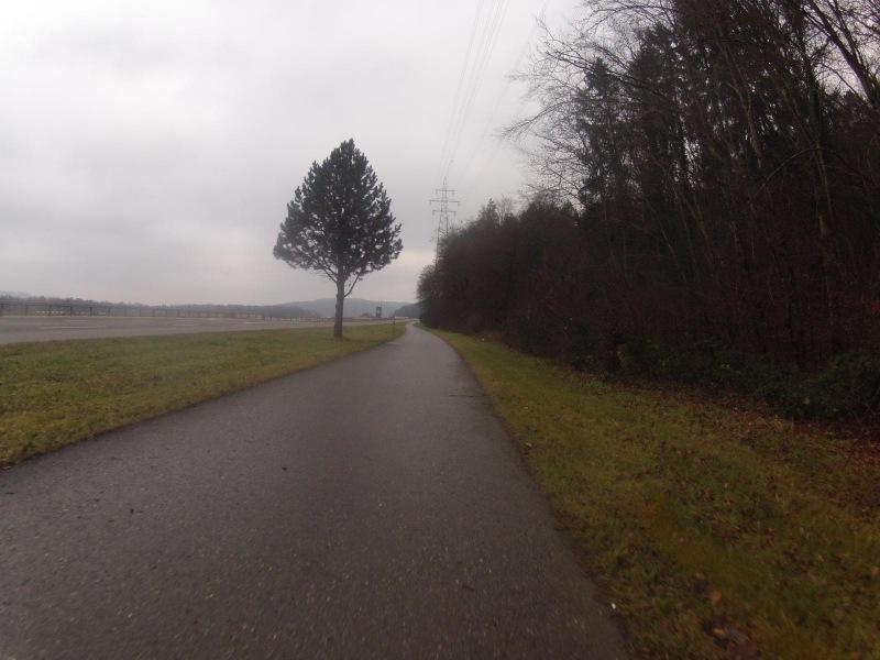 Unterwegs im Rheintal