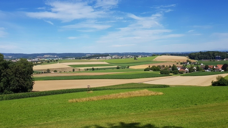 Blick nach Nassenwil, Mettmenhasli Niederhasli