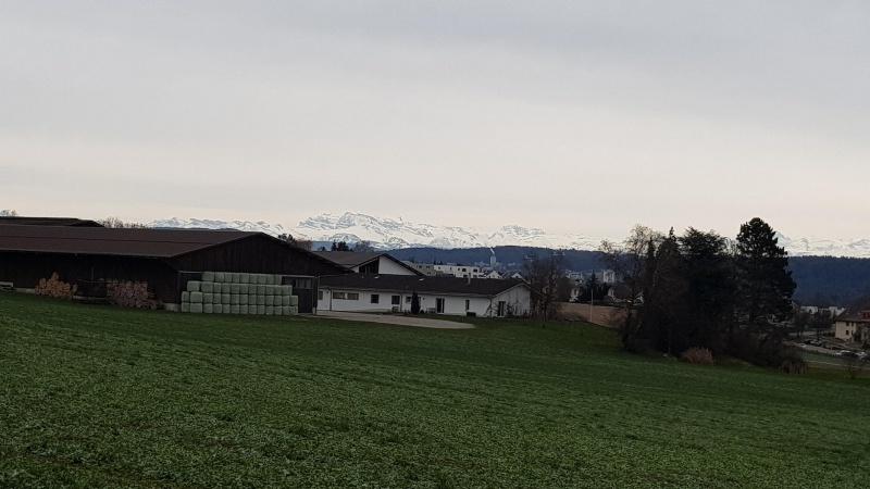 Letzte Chance für einen Blick zu den Alpen