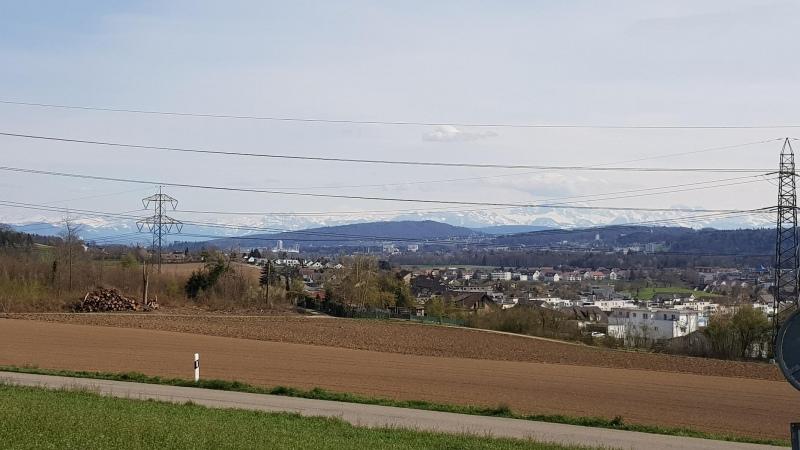 Blick zu den Alpen, in der Nähe von Buchs (ZH)