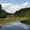 Entlang dem Rhein, kurz nach der Tössmündung