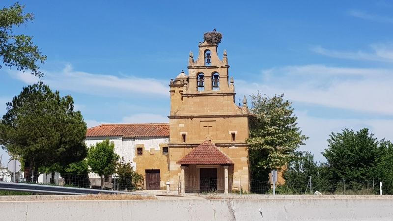 Storchennest auf Glockenturm