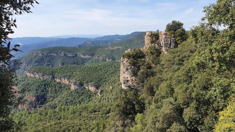 Felsen bei La Musssara