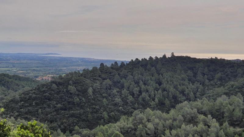 Ausblick vom Collada de les Masies