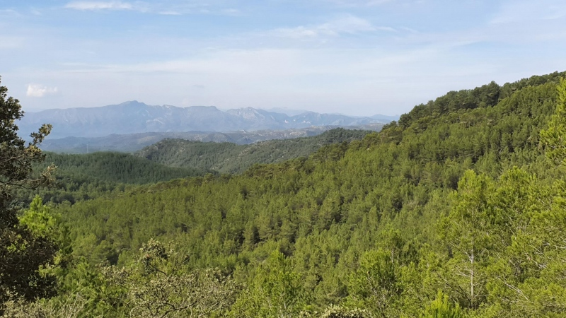 Aussicht ins Hinterland oberhalb Torre de Gavada
