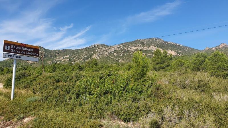 Ein Eindruck von der Hügelkette, über die wir immer wieder fahren