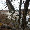 Frühling am Klingnauer Stausee