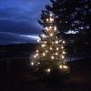 Weihnachtsbaum beim Kraftwerk