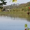 Herbststimmung am Klingnauer Stausee