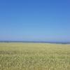 Ostseeküste und Riedersee