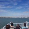 Fähre über die Gironde