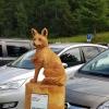 Fix der Fuchs