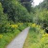 Wanderweg im Rosegtal
