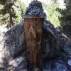 Holzfigur im Rosegtal