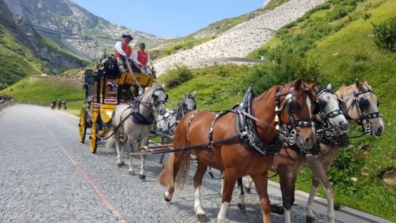Pferdekutsche in der Tremola