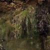 Wasseraustritt in der Beatus-Höhle
