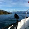 Der letzte Blick auf Eiger, Mönch und Jungfrau