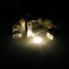 """Die versunkene Stadt Vineta. Hier im Gartenteich des Hotels Vineta \""""by night\"""";"""