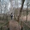 Wanderweg am Kölpinsee