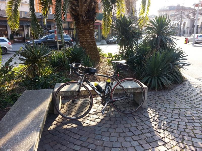 Ende der Silvesterfahrt unter Palmen