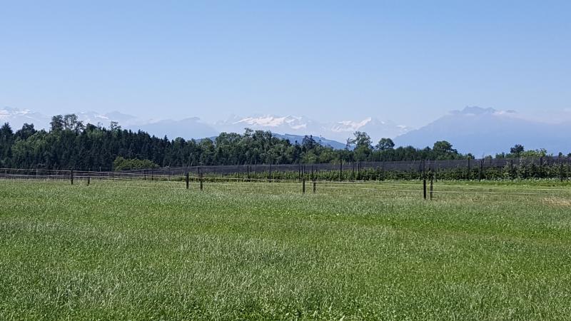 Vom Reusstal zum Alpenkamm
