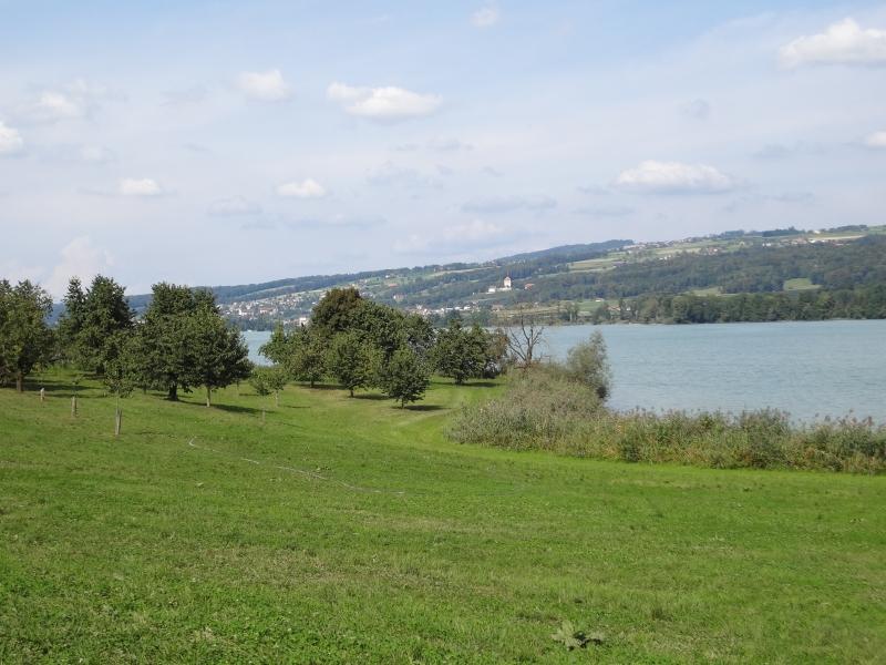 oberes Seetal und Baldeggersee