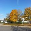 glänzender Herbst