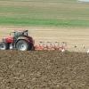 Störche und Traktor