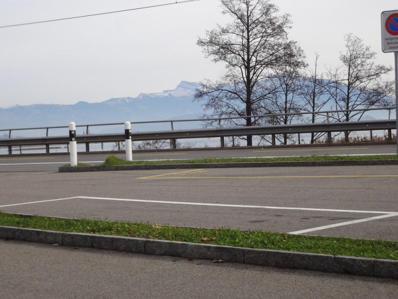 Auf dem Seedamm am Zürichsee