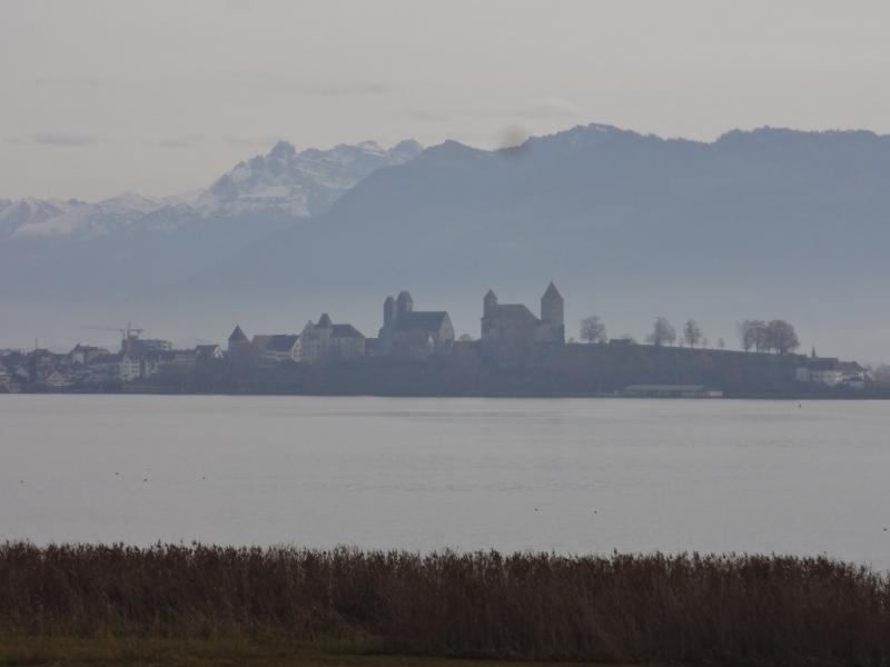 Am Zürichsee, Blick nach Rapperswil