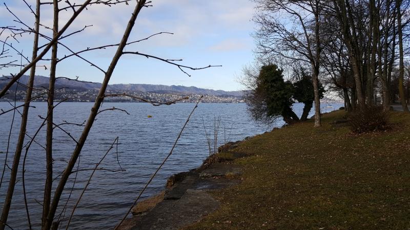 Zürichsee bei Herrliberg