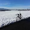 Am obersten Ende des Zürichsees